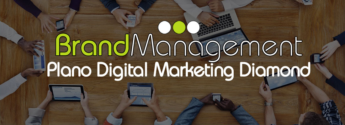 Brand Management Brasil - Plano de Marketing Digital Diamond