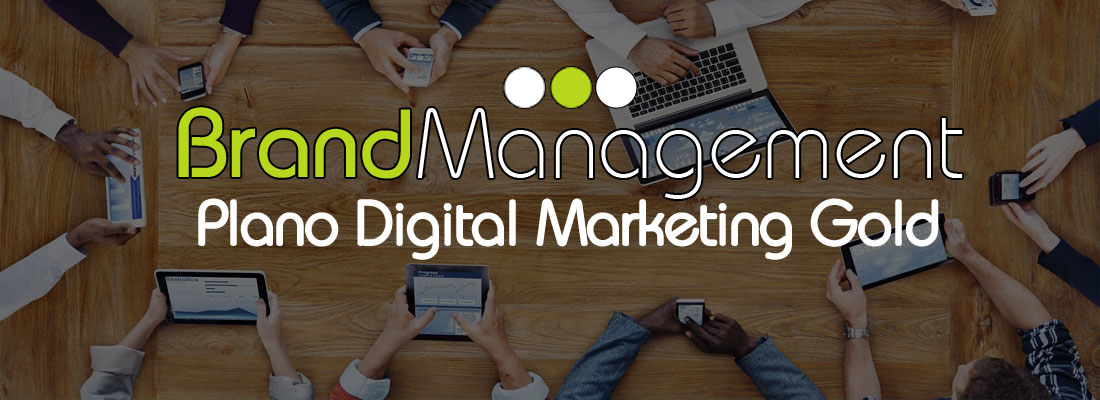 Brand Management Brasil - Plano de Marketing Digital Gold
