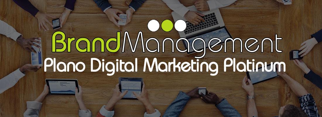 Brand Management Brasil - Plano de Marketing Digital Platinum