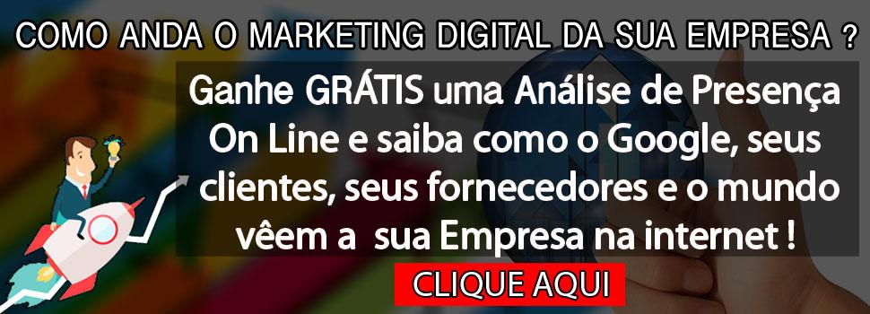 Brand Management Brasil - Análise de Presença On-Line